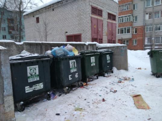«Разберемся с мусором?»: Newsvo опубликует ответы на острые вопросы о «мусорной реформе»