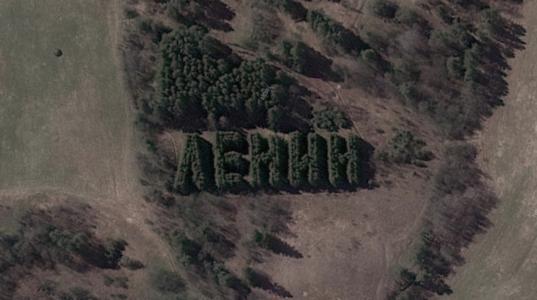 В Вытегорском районе признали выявленным объектом культурного наследия геоглиф «Ленин»