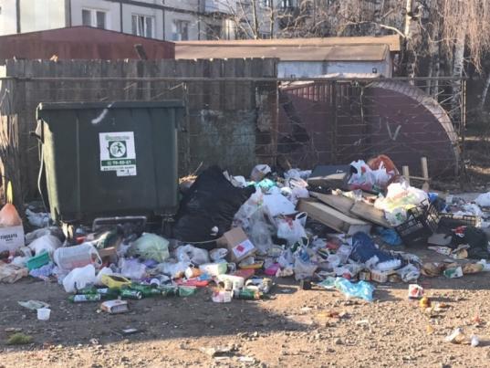 Тариф на вывоз мусора в Вологодской области снизят со 140 до 119 рублей за человека