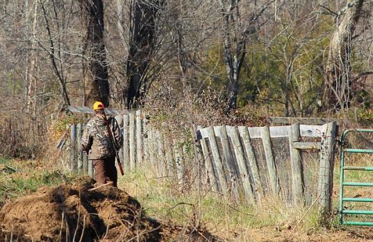 Череповецкого браконьера, который в лесу подстрелил другого охотника, приговорили к исправительным работам