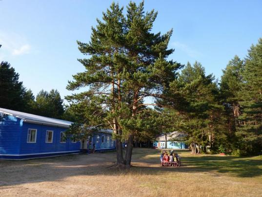 Летом в Вологодской области будут работать 15 палаточных детских лагерей