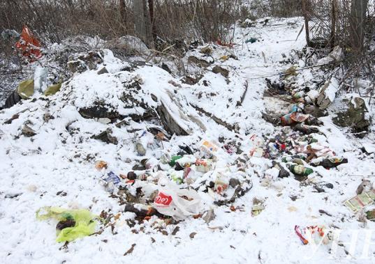В Усть-Кубинском районе суд обязал чиновников ликвидировать свалку возле деревни Богослово
