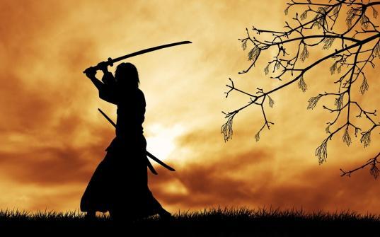 В Вологодском музее-заповеднике пройдет лекция о самураях