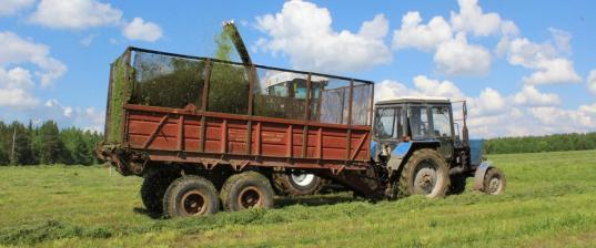 Обыски в Пожаре: льнопроизводителей в Бабаевском районе проверяет ФСБ
