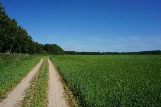 В программу «Вологодский гектар» собираются включить Бабаевский, Вытегорский и Харовский районы