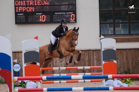 Череповчанка Алина Дмитриева завоевала золото, серебро и бронзу конных соревнований в Петербурге