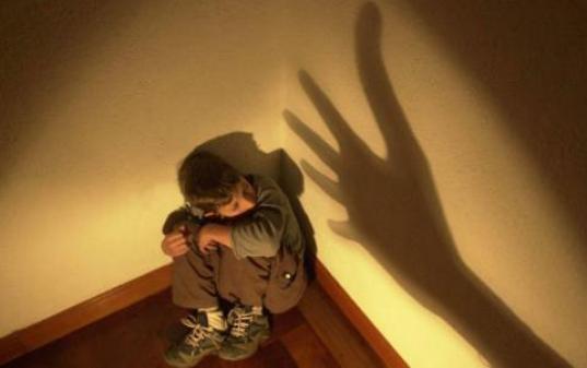 В Вологде откроется «зеленая комната» для работы с детьми-жертвами насилия