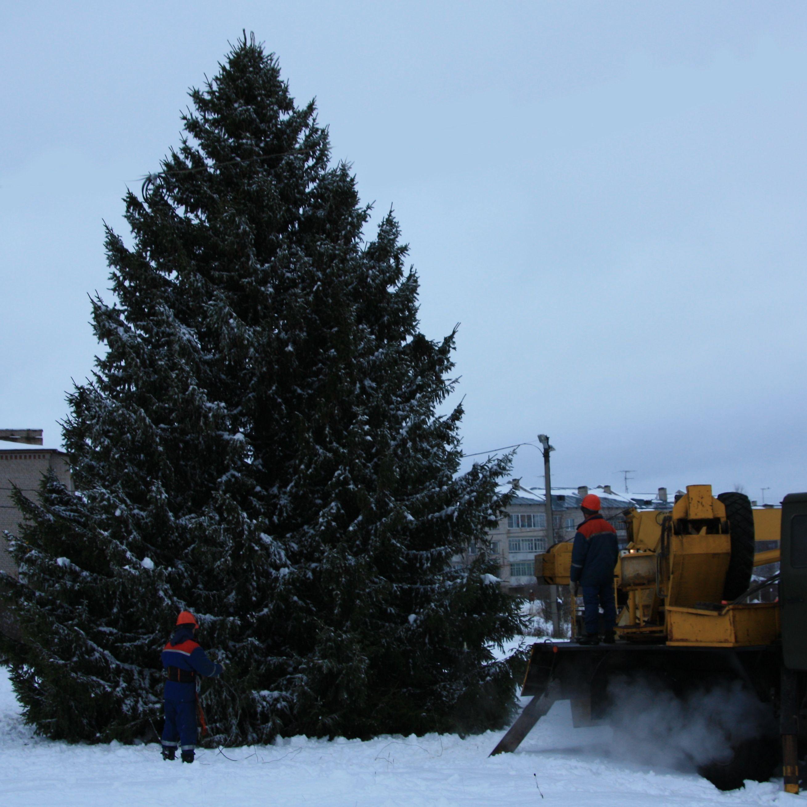 Филиал МРСК Северо-Запада «Вологдаэнерго» устанавливает новогодние ёлки во всех производственных отделениях