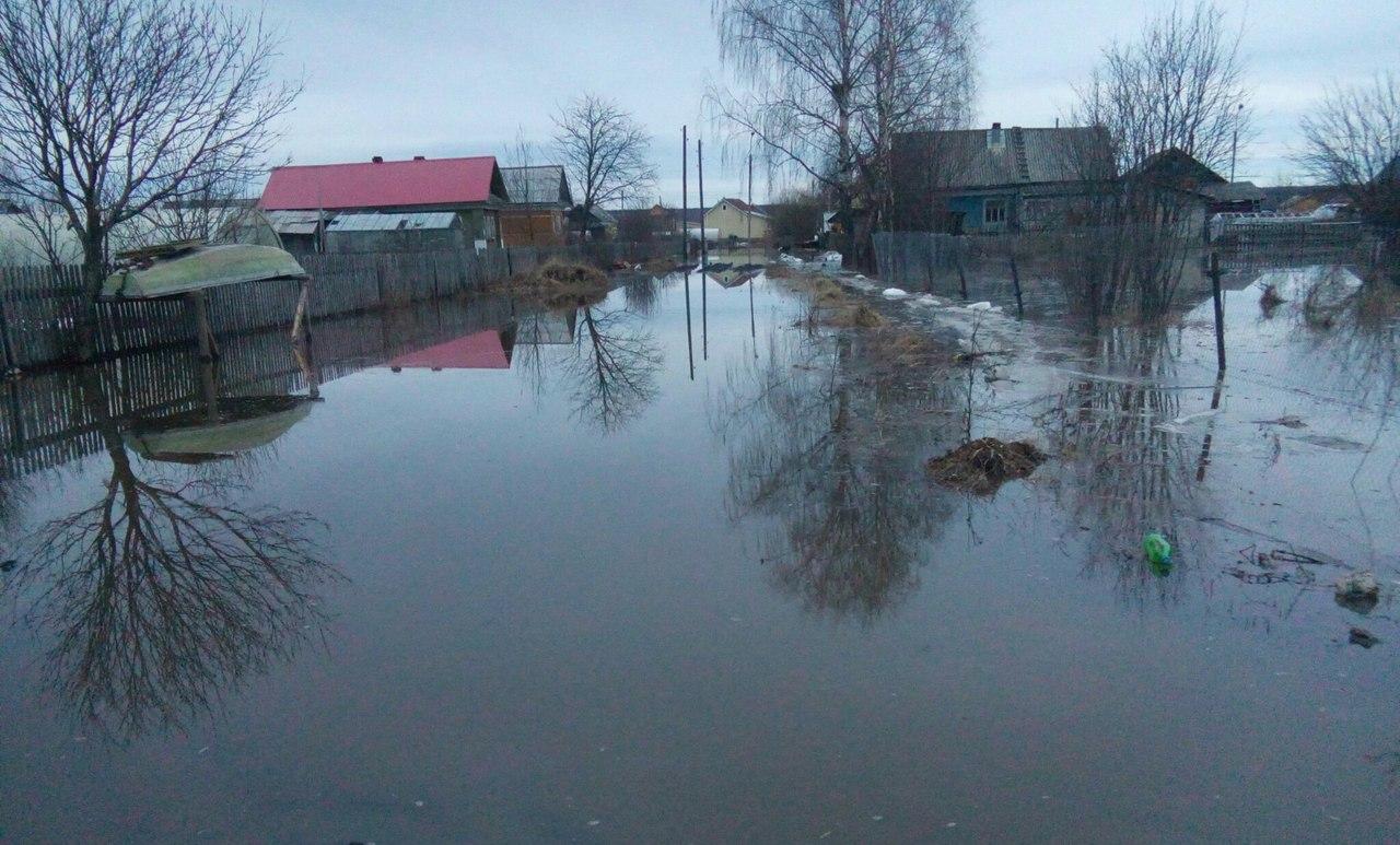 Губернатор Вологодской области сказал президенту, что уровень воды упал во всех населенных пунктах