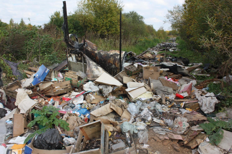Территорию возле парка Мира в Вологде завалили тоннами мусора