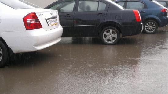 Даже пока до машины дошел промок по колено