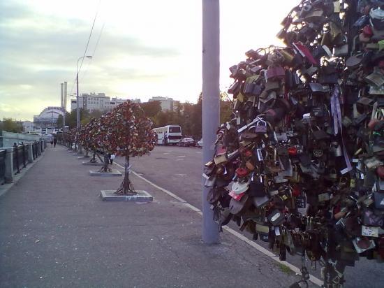 """Аллея деревьев с """"брачными замочками""""."""