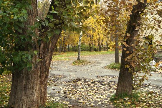 Старый парк в центре Вологды