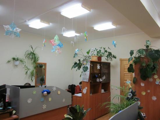 Новогодние украшения девчонки вырезали из бумаги: снежинки, шишки, звезду на елку...