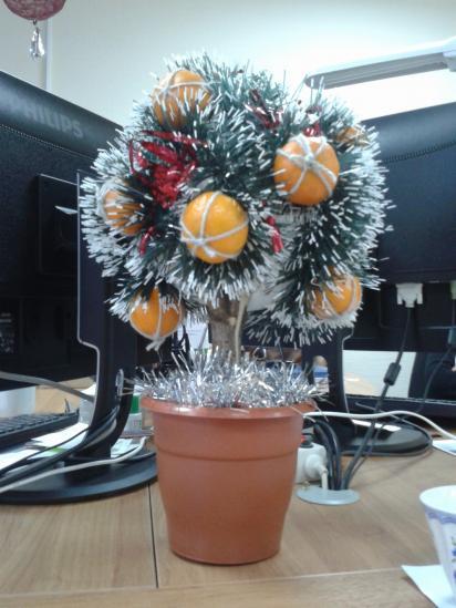 Мандариновое дерево – согласно древней науке фэн-шуй  символ  богатства и изобилия. А его фрукты, любимые всеми нами с детства – символ Нового года, праздника и веселья!