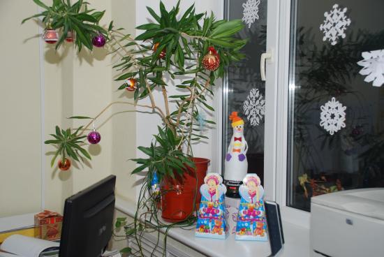 Это наша новогодняя пальма