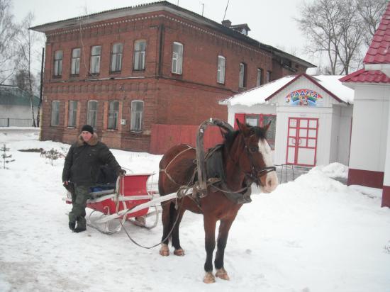 Самый надёжный вид транспорта на селе.