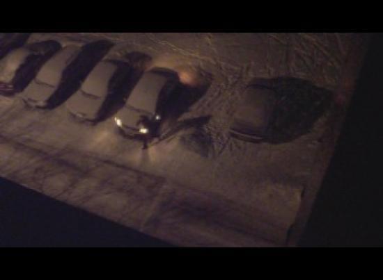 Видеокамера зафиксировала акт вандализма над автомобилем Александра