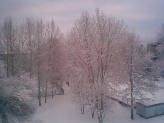 Всё в пушистом снегу.