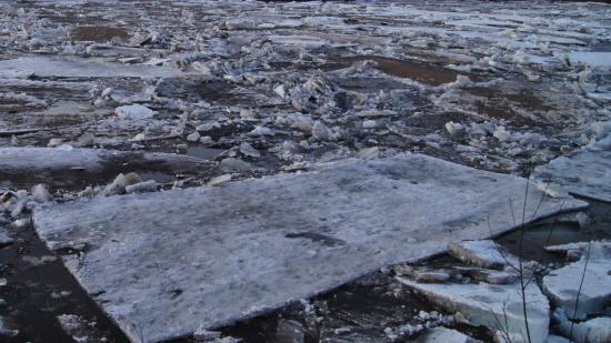 Многие льдины уже разрушились, а эта - самая большая - пока держится.