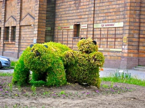 Скульптура медведей - малыш и взрослый. Ну, тут и думать много не надо. Эта травяная скульптура расположена около городского дворца