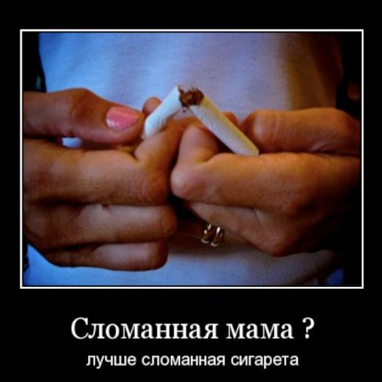 автор работы Алекс Воеводин