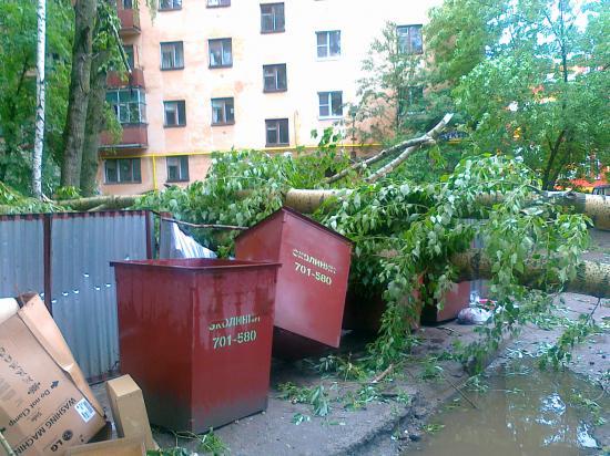Тополь упал на контейнеры для мусора