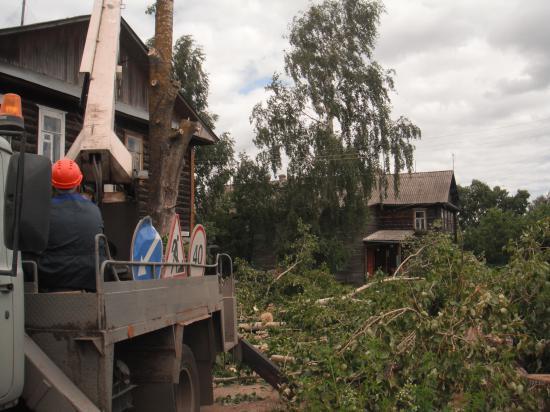 Работа по уборке старых деревьев  в селе Кубенское в полном разгаре