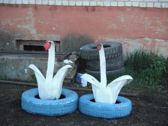 Лебеди всегда вместе.