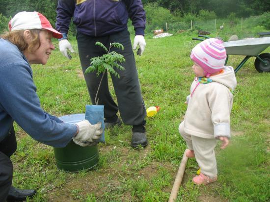 Скоро на участке будут расти еще и рябинки. Младшее поколение поможет посадить!