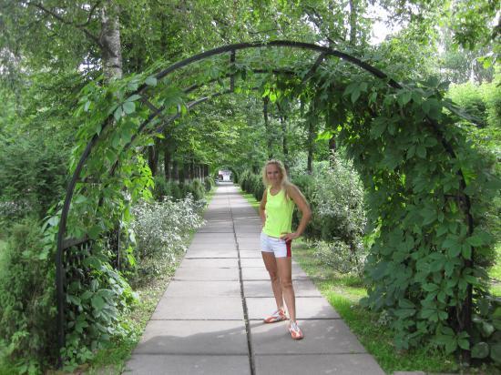Аллея с аркой