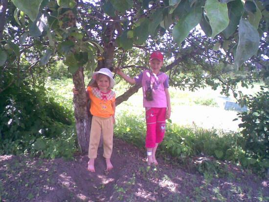 У яблоней. Их у нас 8.