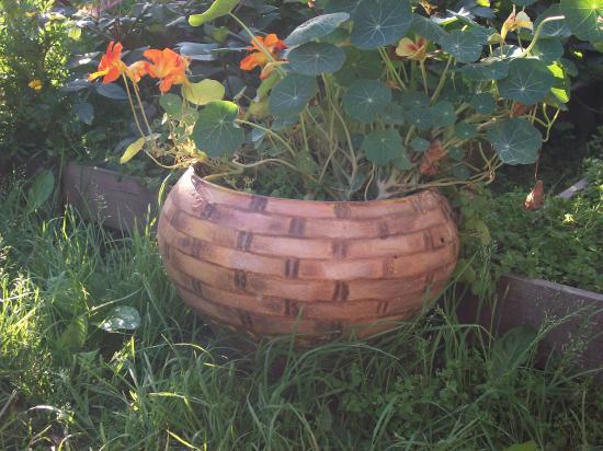 В чугунке, разрисованном под корзинку, теперь выращиваем цветы, а не варим картошку