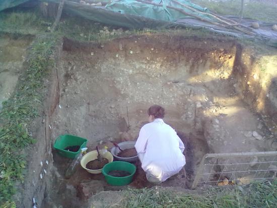 Оказалось, что здесь были печи. Слой обожженной глины и давал немецким приборам сигнал об аномалии. Аккуратно, слой за слоем археологи снимают землю. Пока ничего ценного здесь не нашли. Только угли.