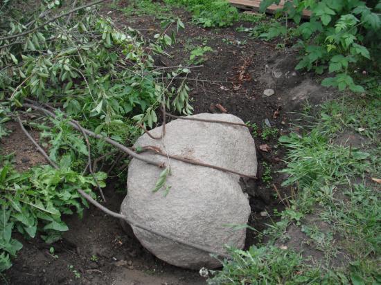 и нелёгкая это работа доставать камни для огорода.