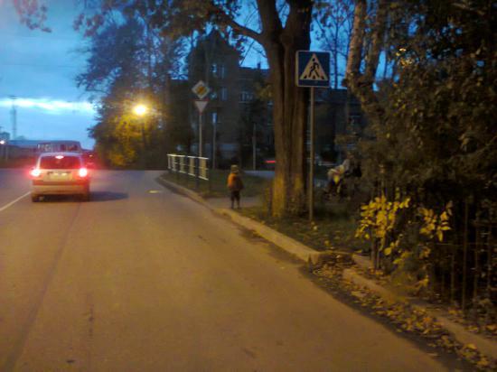 Дорожный знак спрятан за деревом
