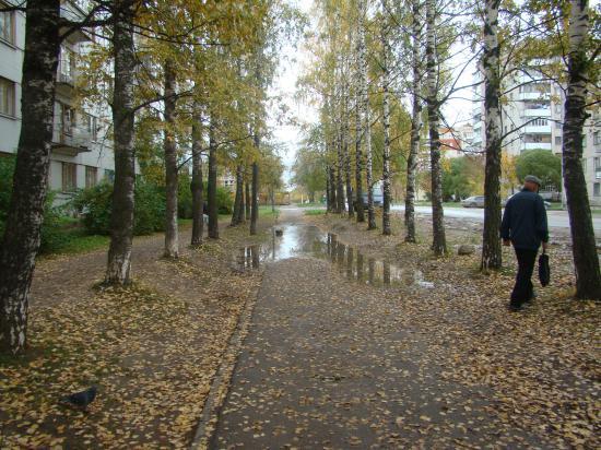Тротуары города Вологды