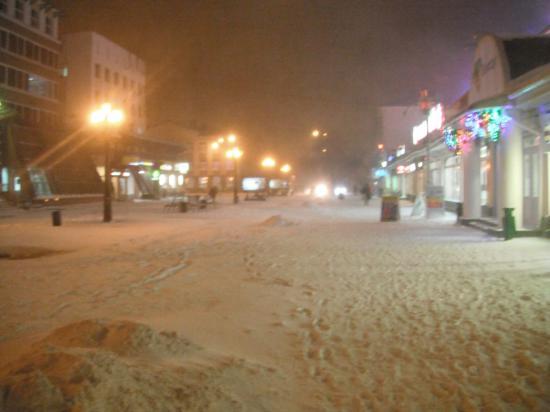 снег кружился и падал и падал..