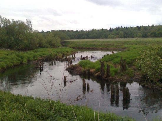 видимо, бывший мост