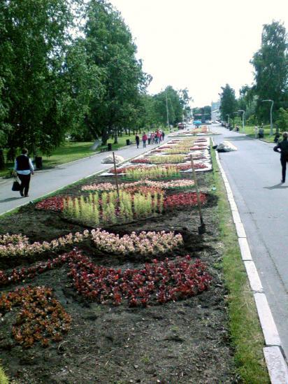 клумба на пр. Победы