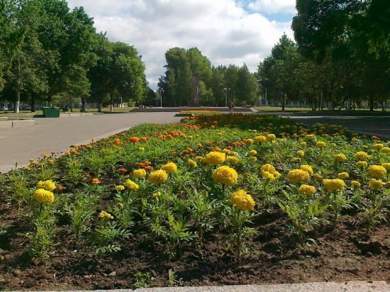 Цветы в Заречье