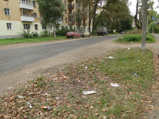 первый придорожный газон на ул.Дзержинского.