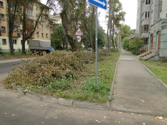 Спиленные ветки на ул.Дзержинского.