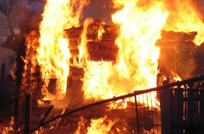 Несколько человек сгорели в Оште Вологодской области