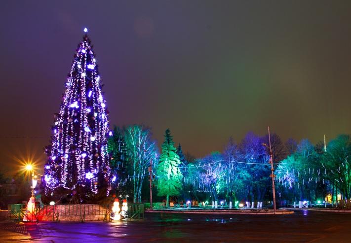 Празднование Нового года в Вологде будут транслировать в Интернете