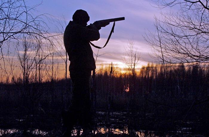 В вологодском лесу снова выстрелили в охотника: мужчина погиб