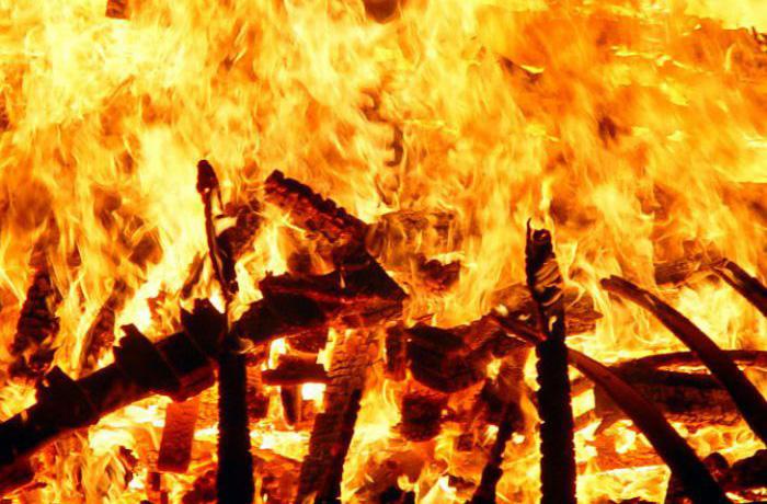 Женщина с ребенком погибли в пожаре в Белозерске