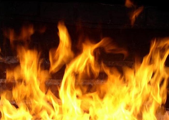 Два ребенка погибли в пожаре в Вологодском районе