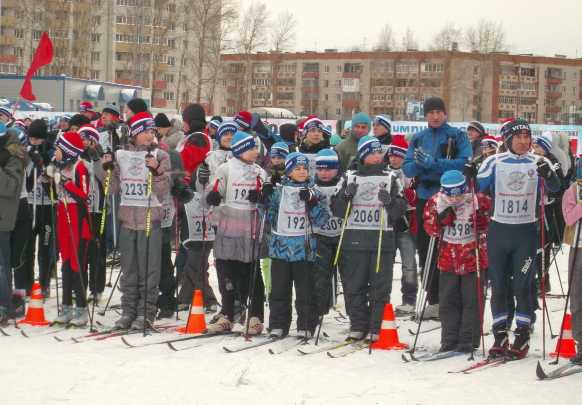 Около 3 тысяч вологжан вышли на «Лыжню России»