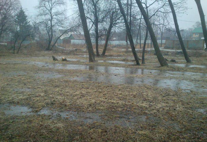 Вологодские чиновники больше не смогут предлагать многодетным семьям болотистые участки земли